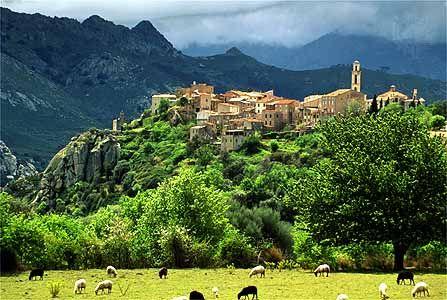 Montemaggiore - Balagne