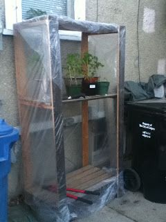 life, ideas, and other random bits...: DIY Greenhouse and small Kitchen decor