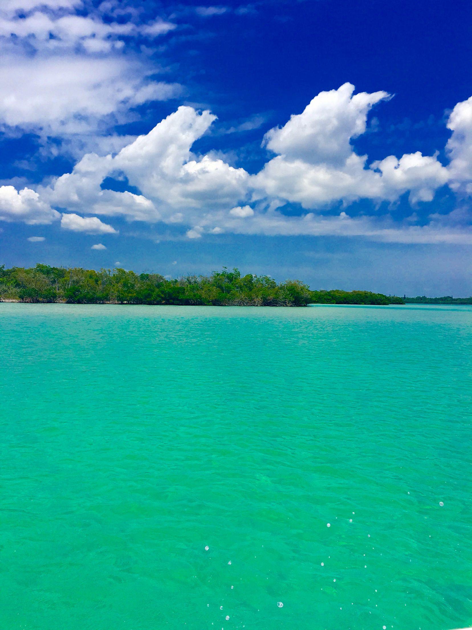 Manasota Key | Coastal vacations, Manasota key florida ...