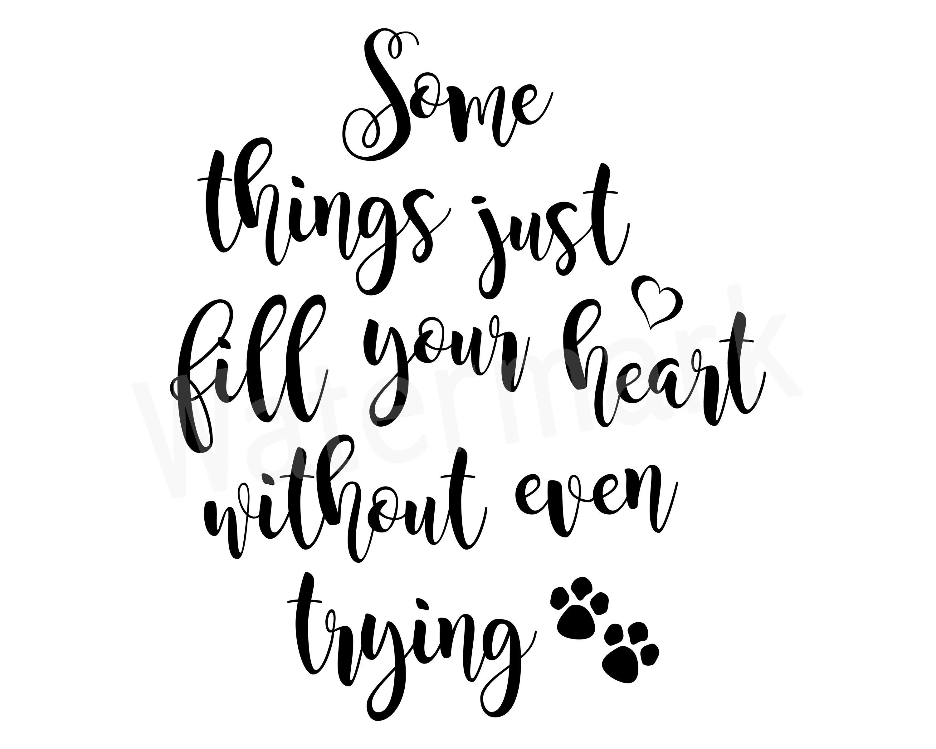 Some Things Just Fill Your Heart Without Even Trying Pet