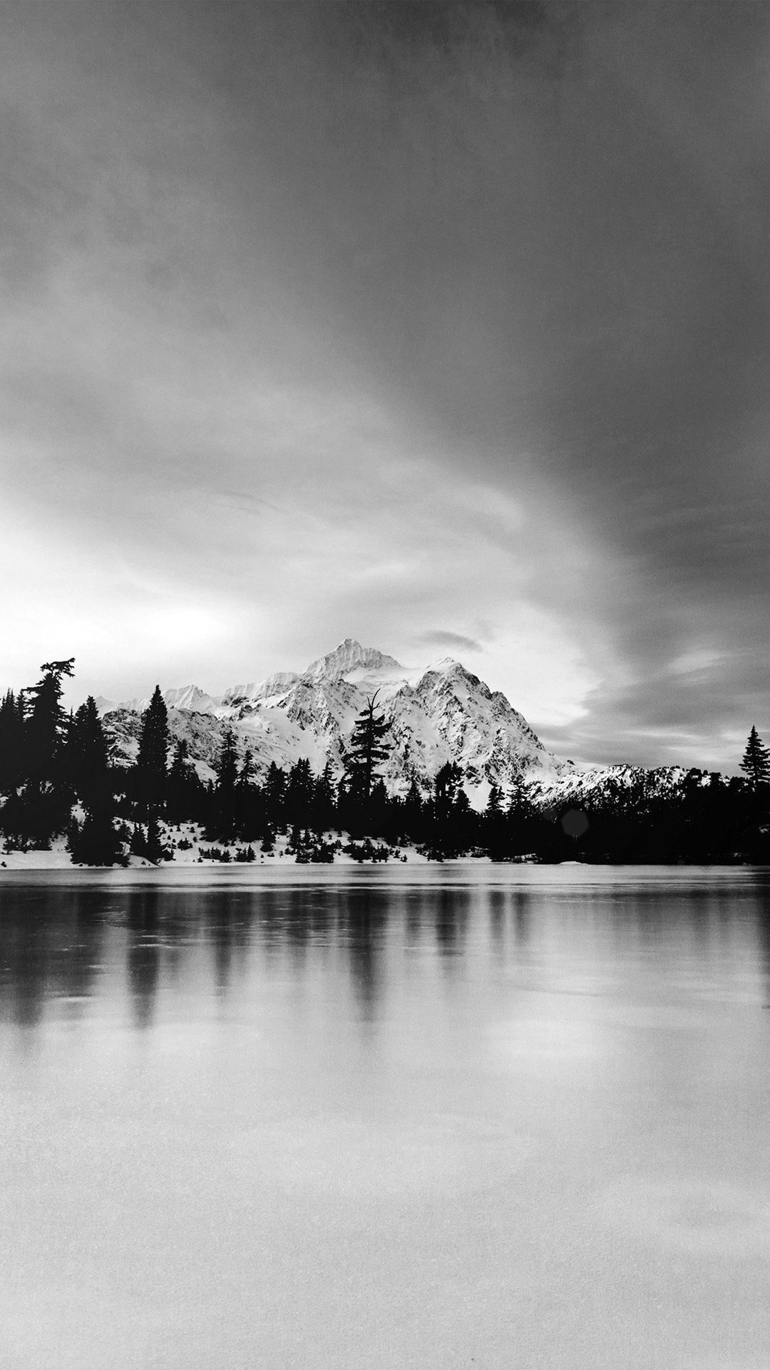 Frozen Lake Winter Snow Wood Forest Cold Bw Dark Iphone 8 Wallpapers Black And White Wallpaper Iphone Black And White Wallpaper White Iphone
