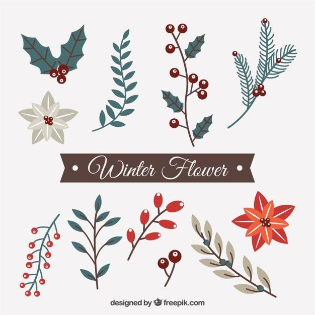 Photo of Download Set Of Decorative Winter Flowers for free