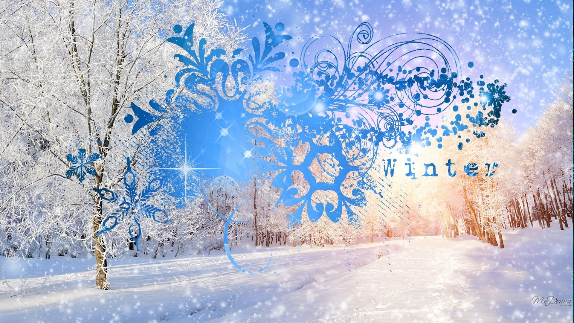 Winter Wonderland Desktop Wallpaper 1920x1080 for 1080p