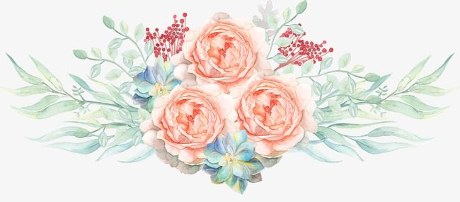 Watercolor Flowers Watercolor Clipart Pink Flowers Png