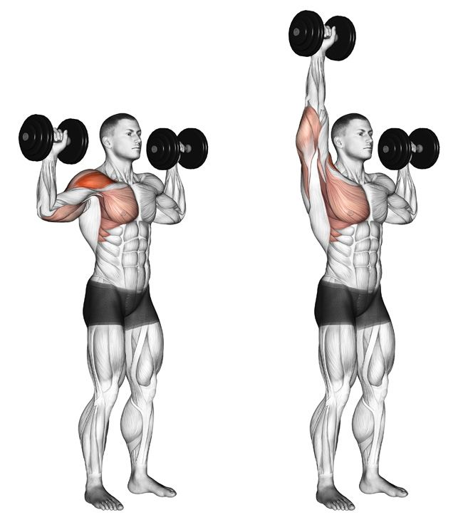 Dumbbell overhead press at home