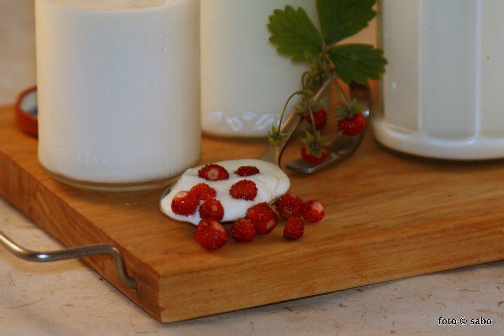 joghurt selber machen mit dem d rrger t low carb pinterest joghurt selber machen joghurt. Black Bedroom Furniture Sets. Home Design Ideas