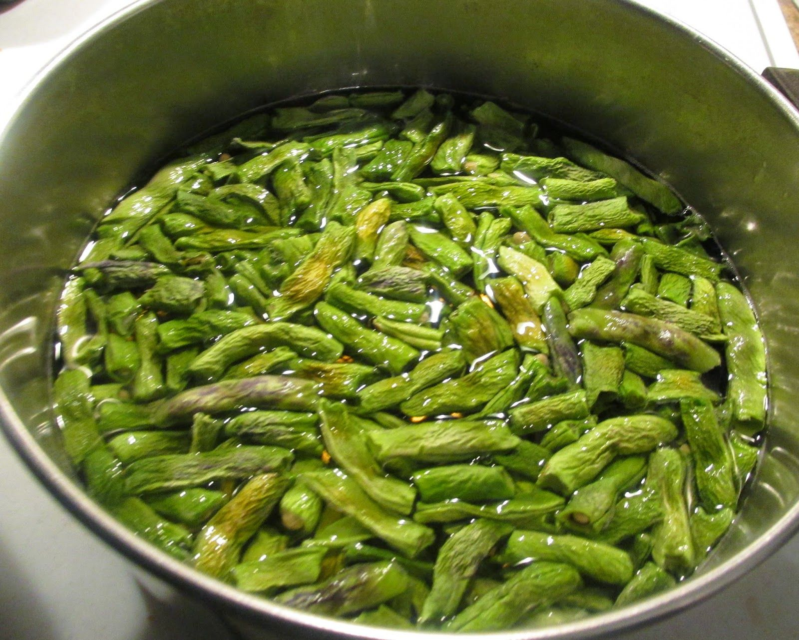 Vickie 39 S Kitchen And Garden How To Cook Dehydrated Green Beans Shuck Beans Shucky Beans