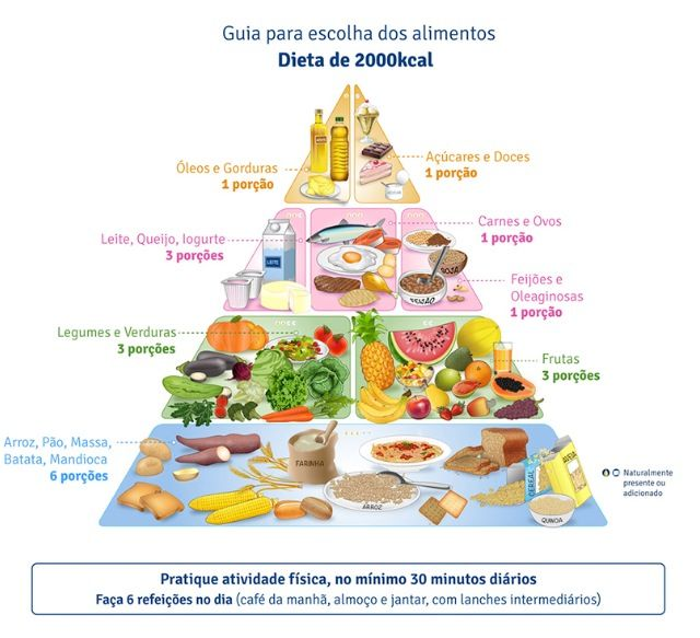 009 Brazilian Food Guide Pyramid should be followed for
