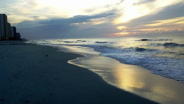 5a1ddfa5a3225398a20b63cc9bb6ec5d - Sea Gardens North Myrtle Beach South Carolina