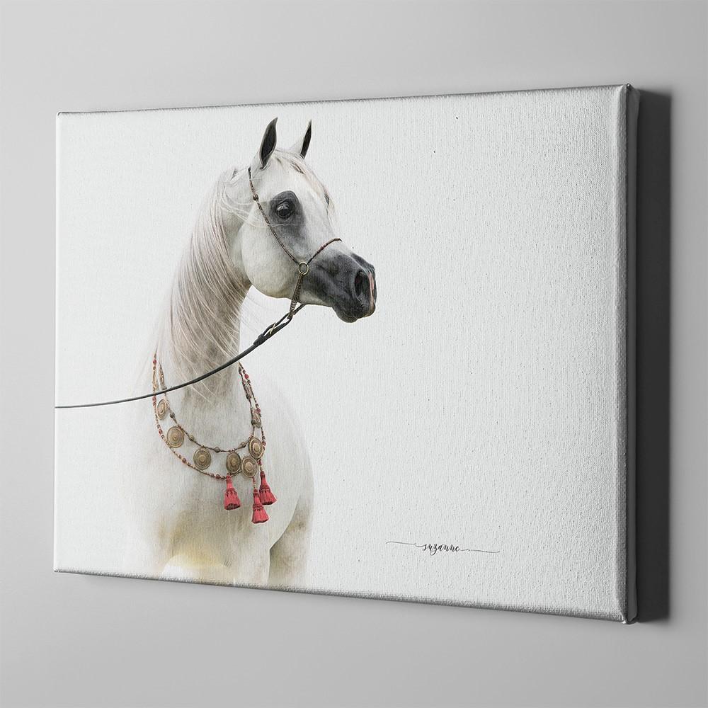 Bari Gallery شاه مشعل خيل عربي أصيل 1 لوحة كانفس لوحة فنية جدارية للمنزل Art Moose Art Horses