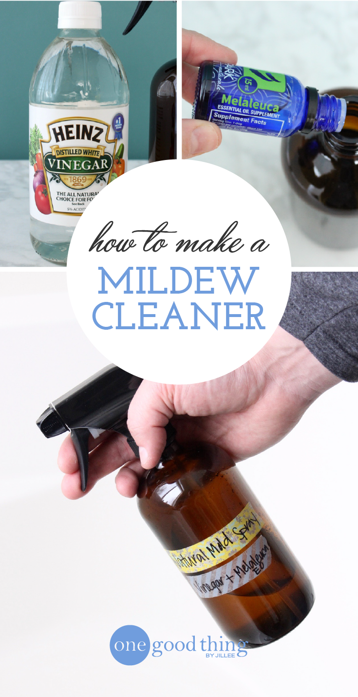 How To Get Rid Of Mold and Mildew Naturally | Cleaning ...