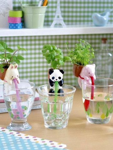 50% off in our big January Clearance! Chuppon Kawaii Self Watering Animal Planter now just £4.95 #selfwatering