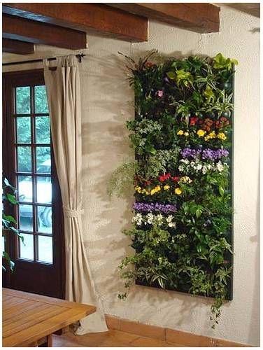 Fotos En Infojardin Wallnatura Jardin Vertical Interior Ideas De