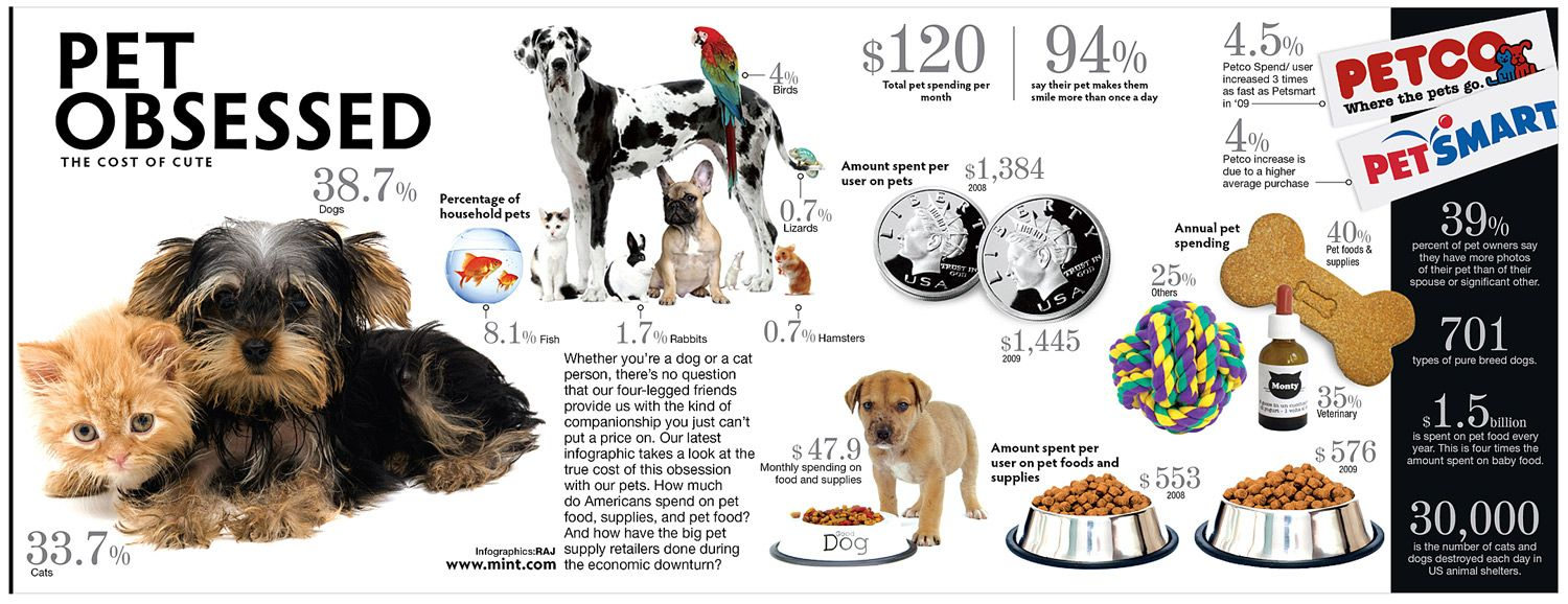 Putting A Price On Puppy Love Dog Infographic Animal Infographic Pets