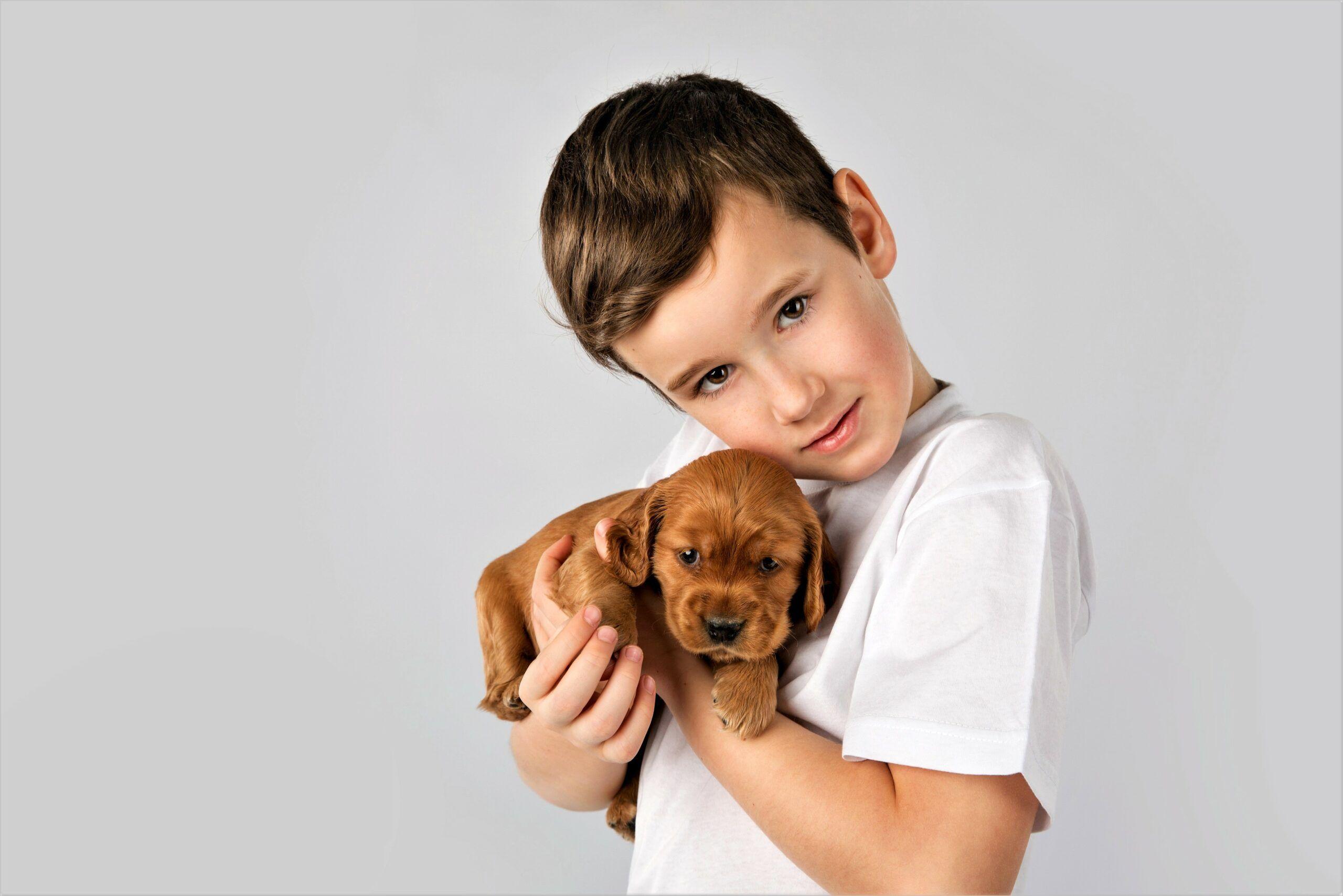 Cute Boy 4k Wallpaper Dog Care Canine Quality Dog