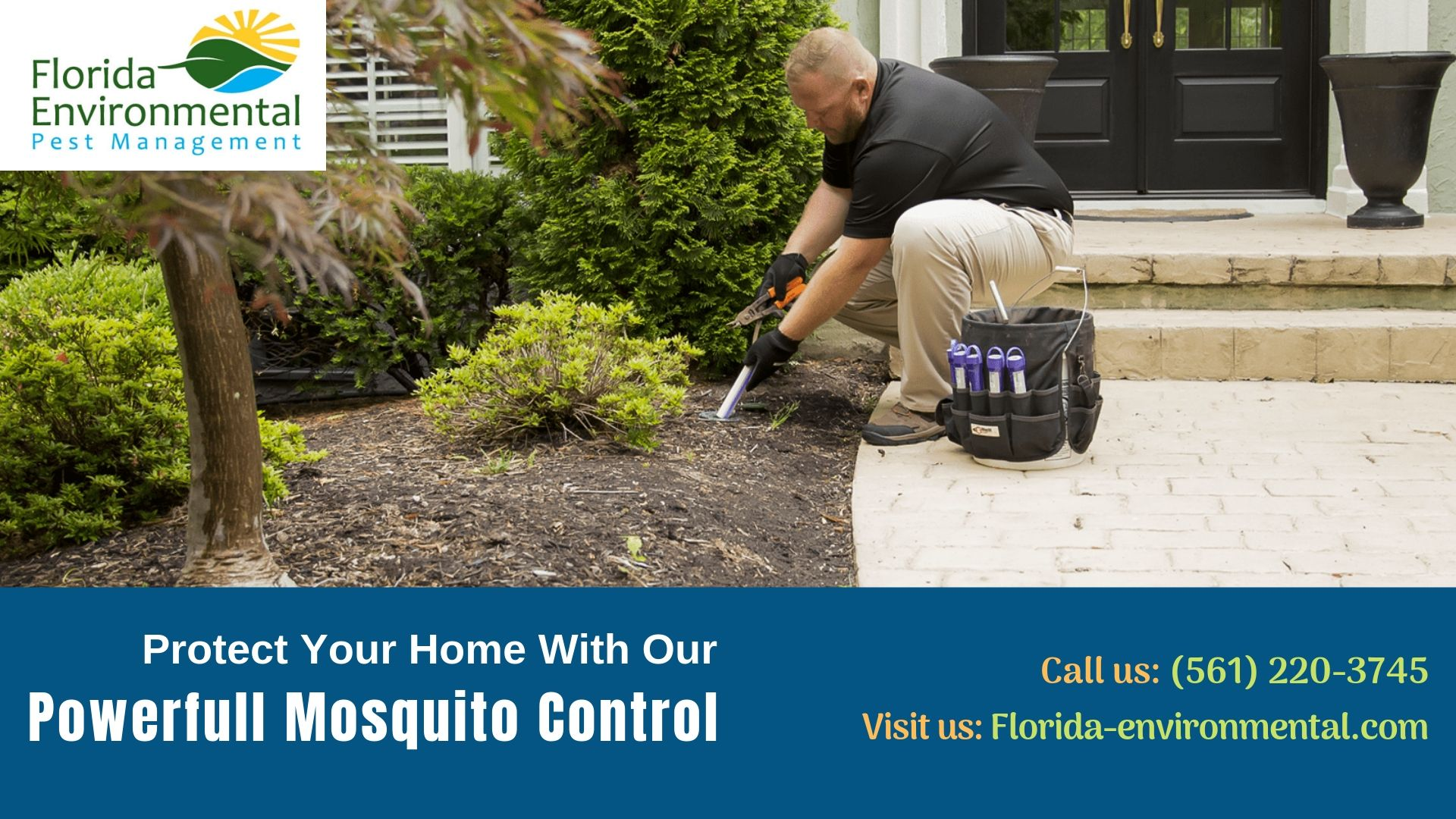 Are You Searching For Effective Mosquito Control Services At Florida Environmental Pest Management Have Mosquito Control Pest Management Pest Control Services