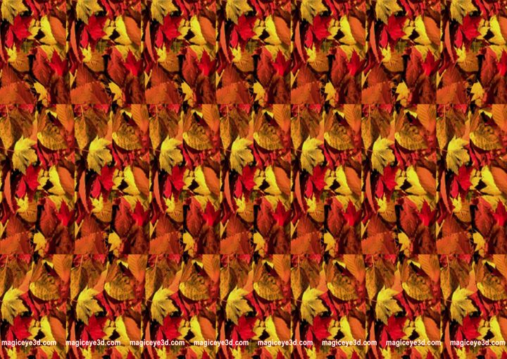 Stereogram 3d Image Magic Eyes Hidden Images Eye Illusions