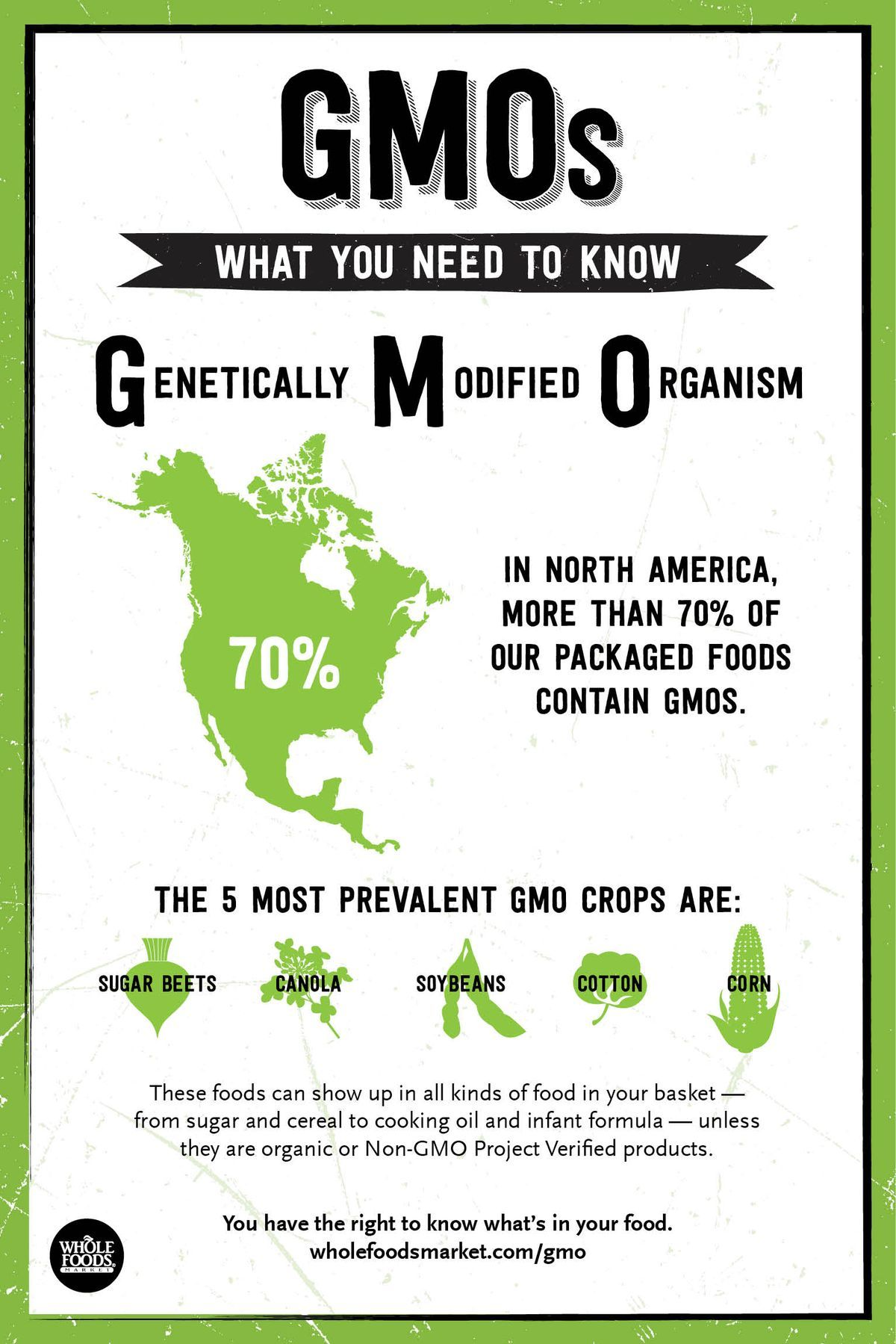 Pinterest Gmo facts, Good to know, Gmos