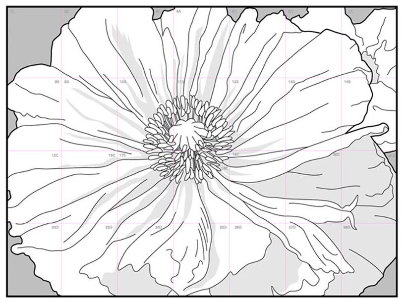28 Pages For 5 For Collaborative Coloring Mural Of A Poppy By