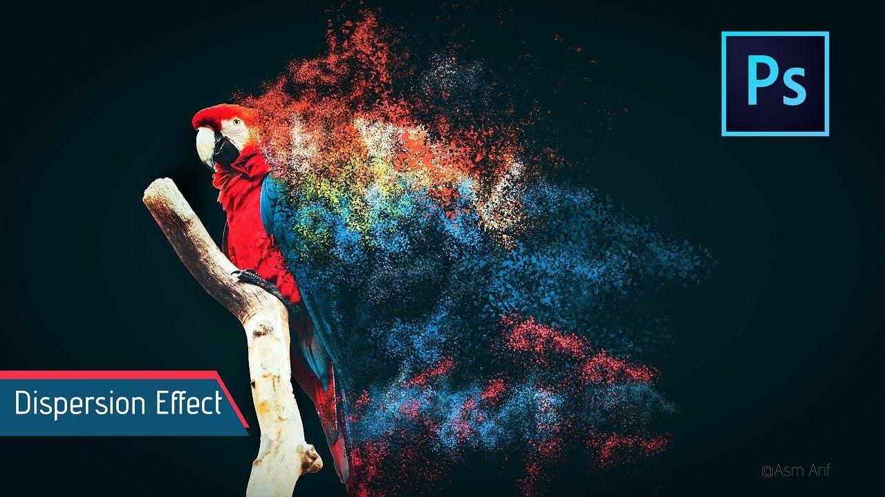 Photoshop tutorials dispersion effect macaw photoshop photoshop tutorials dispersion effect macaw baditri Gallery