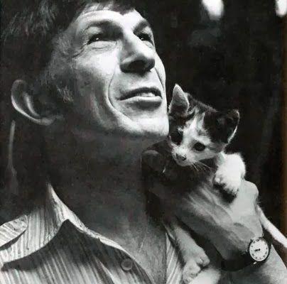 Famous Cat Lovers Actors Actresses Movie Celebrities Celebrities With Cats Men With Cats Cat People