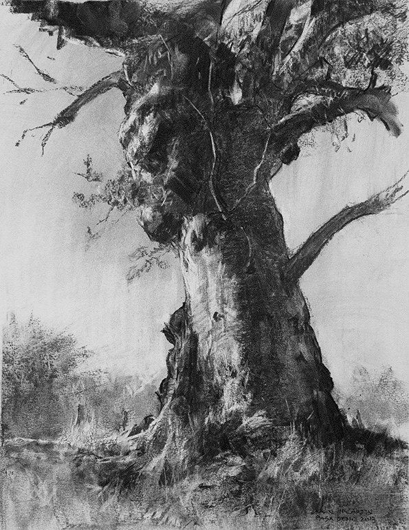 37 best Drawing: landscapes images on Pinterest | Drawings ... |Tree Landscape Drawing