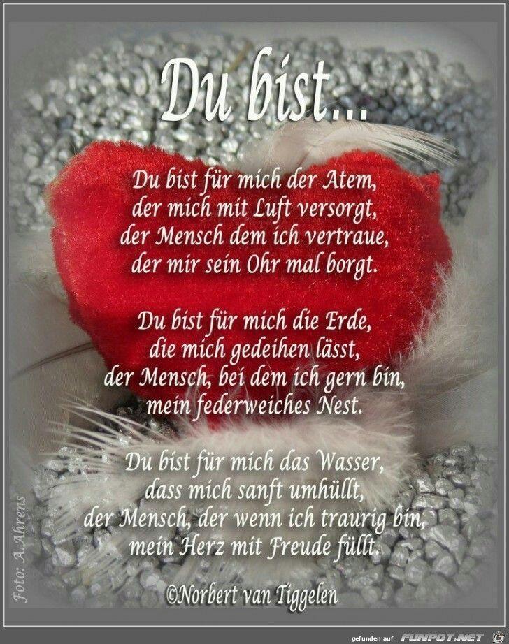Du Auch Daizo Dankeschon Mein Schatz Und Gentleman Schatz