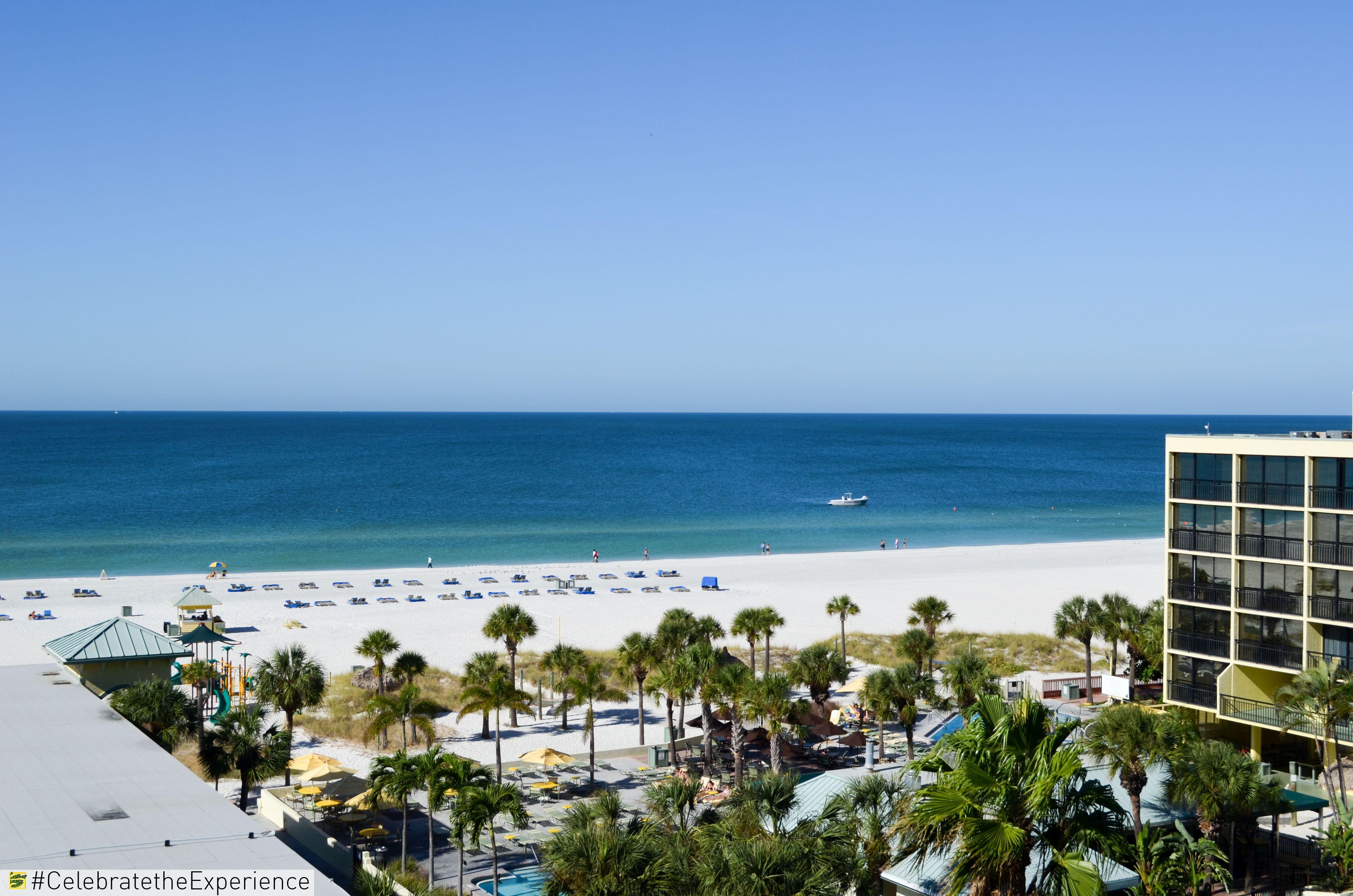 Beach Front Resort Stpete Florida Beach Blue Family Fun Resort Vacation Clearwater Tampa Sirata Beachfront Hotels Beach Beachfront