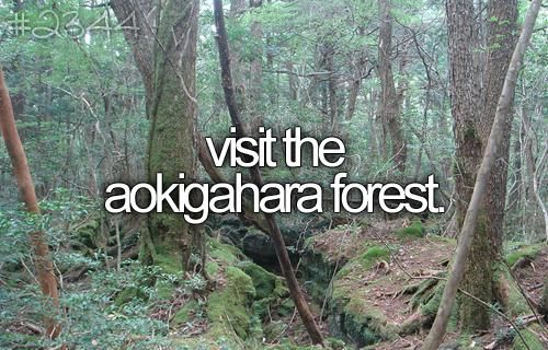Visit The Aokigahara Forest