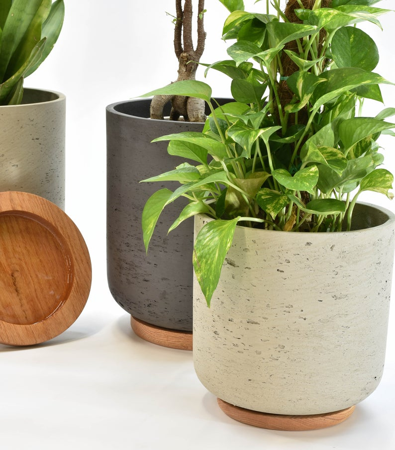 Large Planter Pot Large Outdoor Planter Indoor Planters With Saucer Planter With Drainage Concrete Pot With Saucer Large Planter Pot In 2020 Concrete Plant Pots Large Outdoor Planters Large Planters Pots