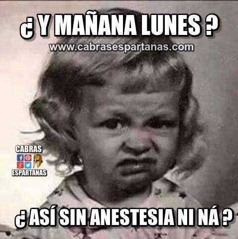 Imágenes Y Memes De Humor Frases Graciosas De Buenos Días