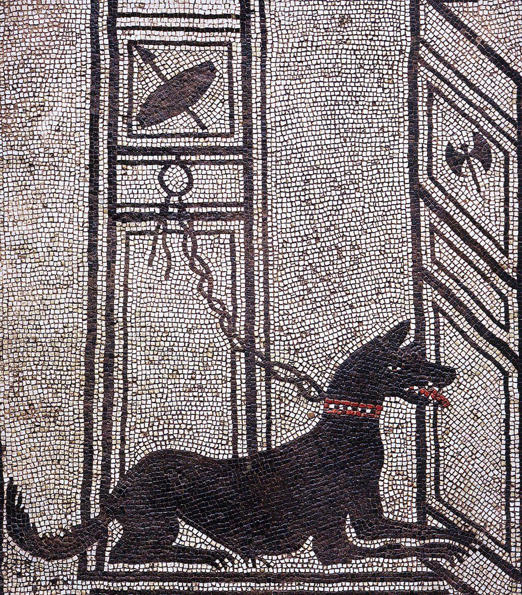 Pompeii Casa di Paquius Proculus Watchdog Cultural depictions of the dog