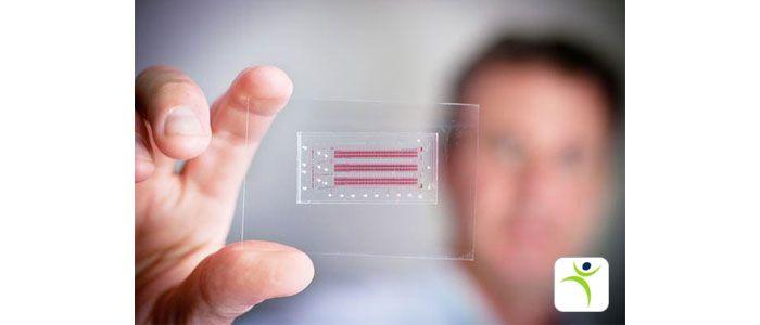 آزمایشگاه تراشه ای ابزاری است که امکان ادغام و یکپارچه سازی چندین عملیات #آزمایشگاهی را تنها بر روی یک تراشه منفرد با ابعاد کوچک چند میلیمتر تا چند سانتیمتر مربع میسر می سازد. #تراشه_آزمایشگاهی با جریان مایعاتی با حجم بسیار کم (در حد نانولیتر تا پیکولیتر) درون کانال های میکرونی سر و کار دارد که توسط فرایندهای تکی یا چندگانۀ درون تراشه، برای تجزیه و تحلیل شیمیایی به کار می روند. #ويكی فارما_خدايا... #ويكی فارما_آرياسان #ويكی فارما_پاك سمن  #Khodaya_WikiPharma #AriaSun_WikiPharma…