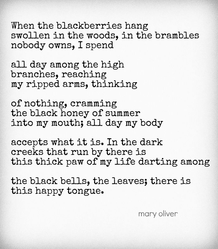 Quotes About Our Backyard : Mary Oliver Quotes on Pinterest  Mary Oliver, Tagore Quotes and Illu