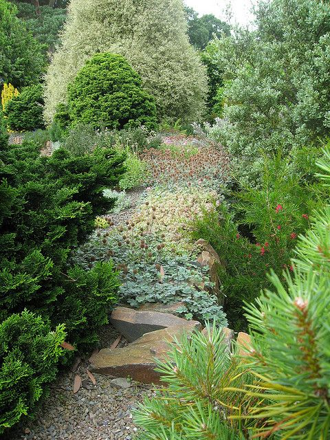 X. Rosemoor: 4d Stone Wall in the Folliage/Plantsman's Garden   Flickr - Photo Sharing!
