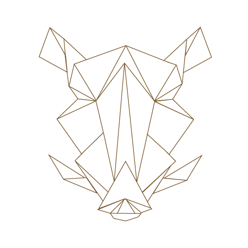 Geometrische Head Wildschwein