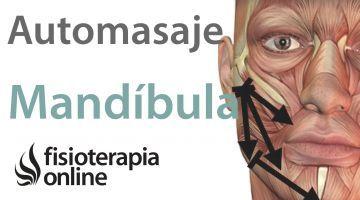 Ejercicios Automasajes Y Estiramientos Para El Tratamiento De Las Cefaleas Automasaje Dolor De Mandibula Masaje