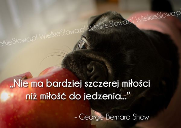 Nie Ma Bardziej Szczerej Miłości Shaw George Bernard
