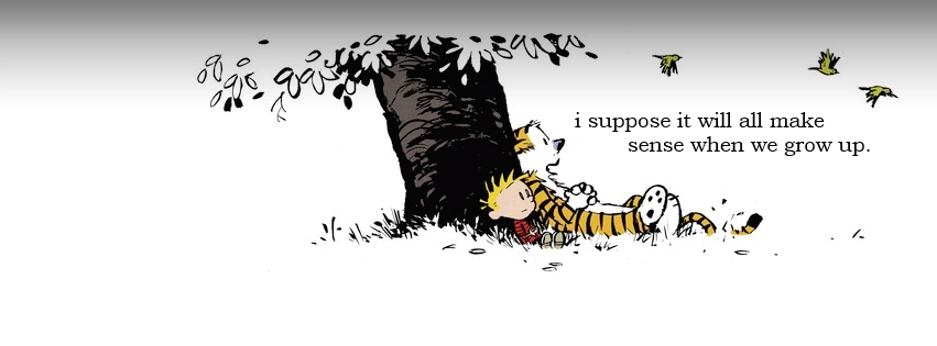 Pin By Ruth Bourdon On Facebook Covers Cover Photo Quotes Best Calvin And Hobbes Facebook Cover Photos Quotes