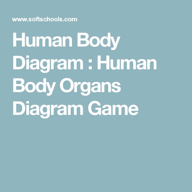Human Body Diagram : Human Body Organs Diagram Game   Anatomy Middle ...
