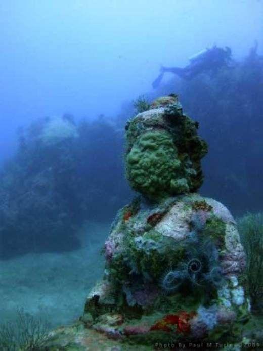 Dwarka Ruins Under Water 9600 Years Bc Underwater Ruins Temple Gardens Underwater City
