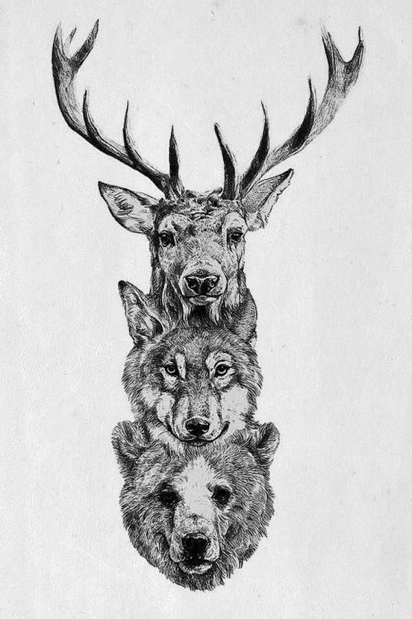 DIY frame Stag Wolf Bear Pencil Sketch Wild Animal Poster Fabric Silk Posters An...