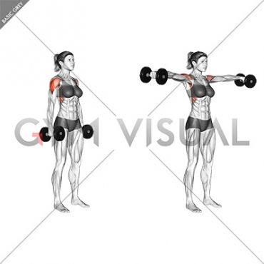 dumbbell standing lateral raise female in 2020  lateral