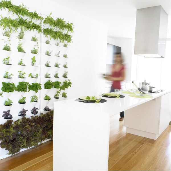 Kitchen Herb Garden Indoor: Indoor Vertical Garden