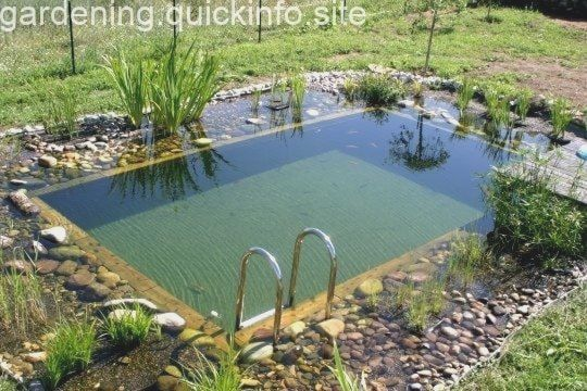 25 Beautifully Natural Pond Swimming Pool Design Ideas 25 Beautifully Natural Pond Swimming Pool Design Ideas