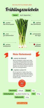 Photo of Frühlingszwiebeln (Lauchzwiebeln)  Sie sollten über Frühlingszwiebeln Beschei…