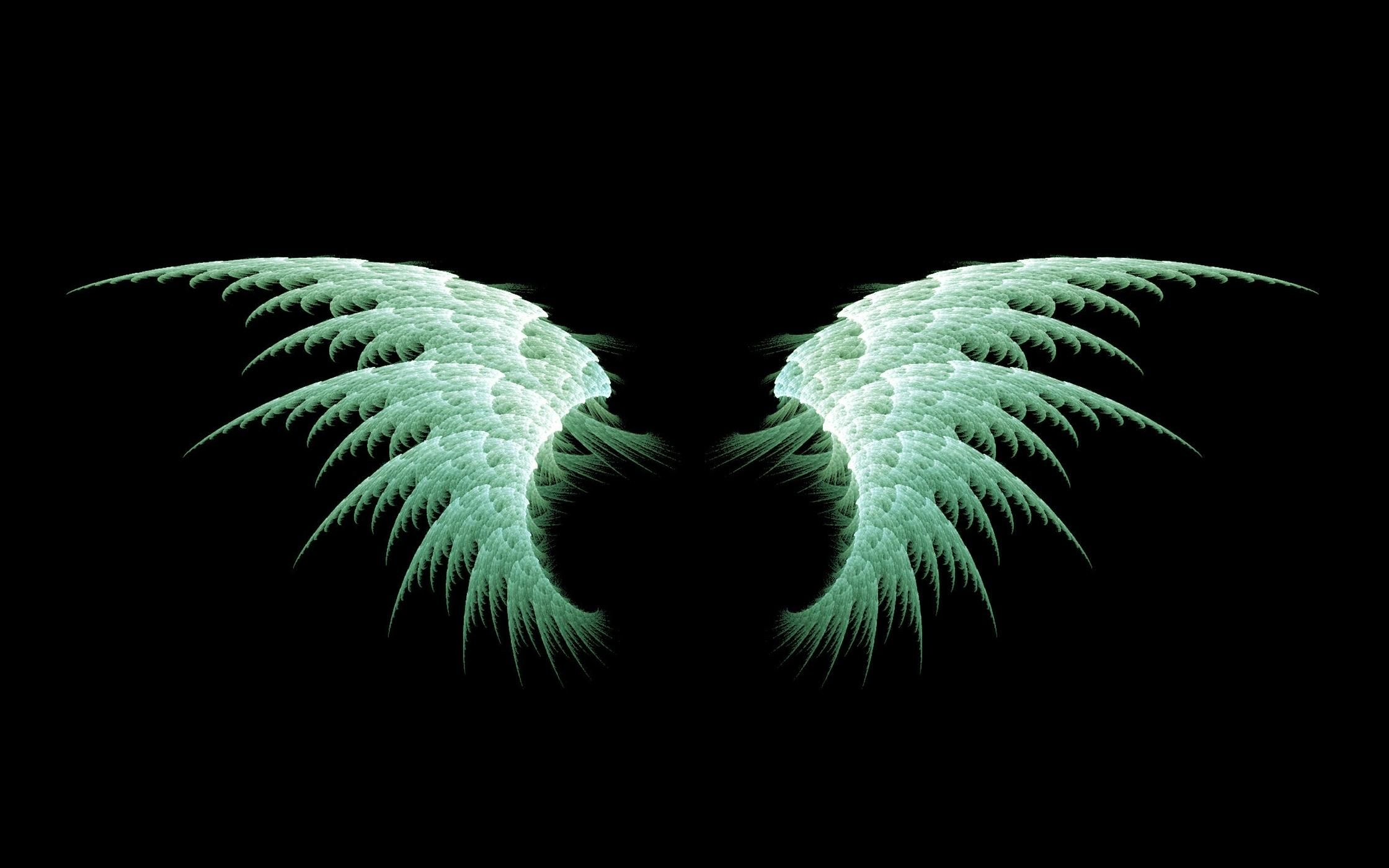 Anime Angel Wings Wallpapers Backgrounds Images Art Photos Wings Wallpaper Angel Wings Hd Fairy Wallpaper