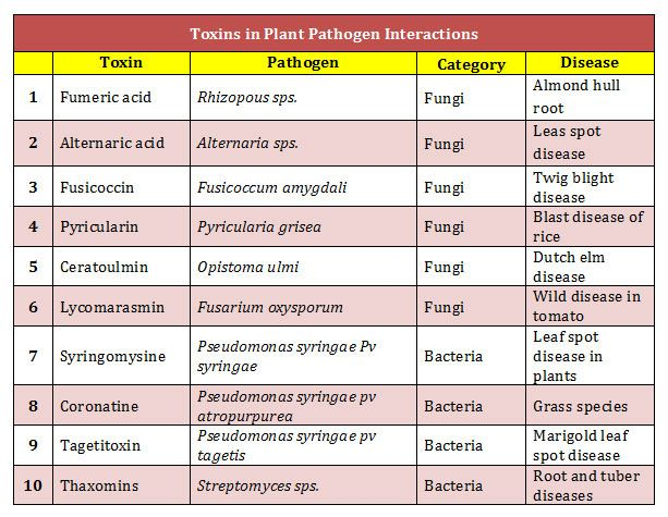 toxins examples
