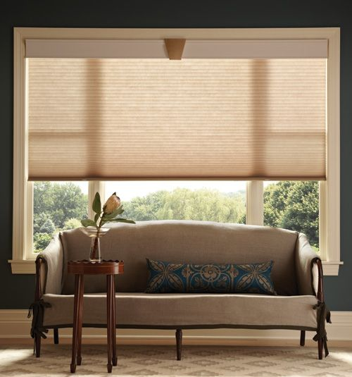 Crystalpleat 3 8 Double Cell Cellular Shade Daydream Shown In Tawny Honeycomb Shades Cellular Shades Shades Blinds
