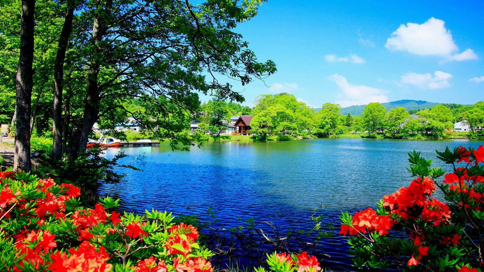 Some Nice Wallpapers Free To Download For Personal Use 915 571 Wallpapers Download Hd For D Beautiful Nature Beautiful Images Nature Beautiful Nature Wallpaper